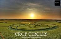 Entretien avec Umberto Molinaro : Crop Circles