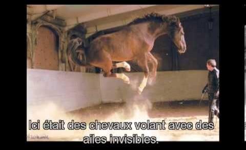 Sur la Voie du Cheval