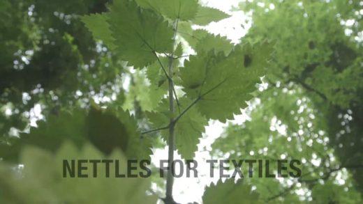 Orties pour le textile (Toutes les étapes de création) EN