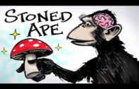 Stoned Ape & Fungal Intelligence – Paul Stamets